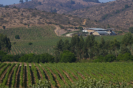 Garces-Silva Winery, Chile