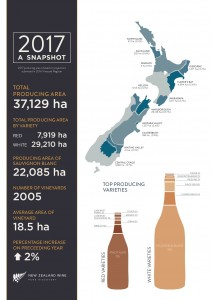 New Zealand Vineyard Reports from #NZWine