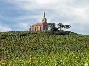 The historic hilltop Chapelle de la Madone overlooks the vineyards of Domaine de la Madone.