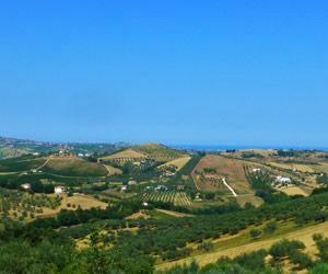 Collecorvino in Abruzzo – Montepulciano country. Photo from Wine-Searcher.com © Frances Reeve