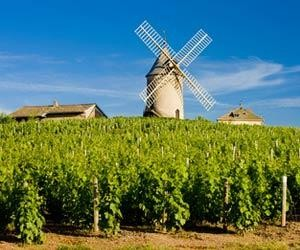 The iconic windmill in Chenas, Beaujolais.