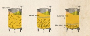 This image from an article on StarChefs.com shows how fining works to clarify wine.